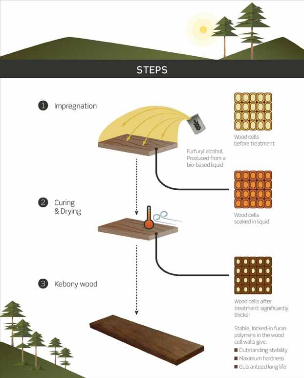 Kebony technology step image